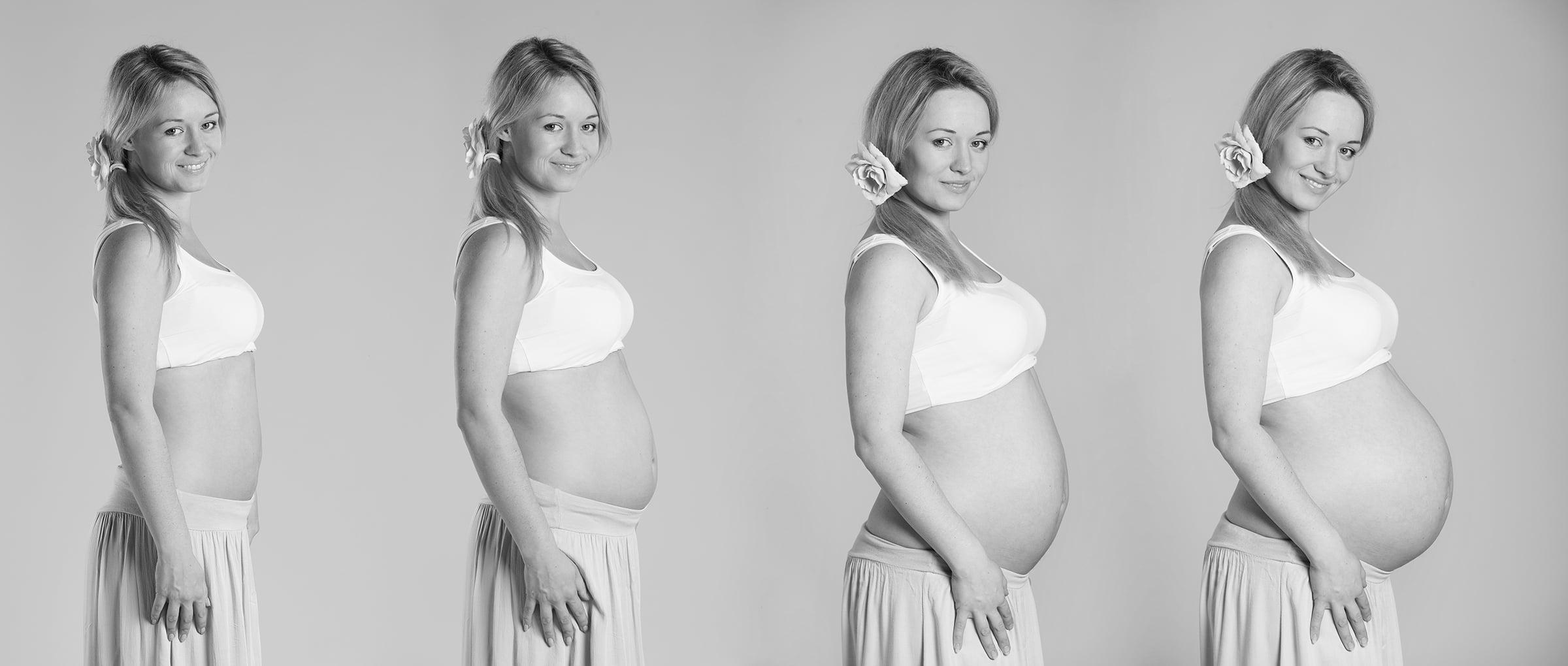 Le fasi della gravidanza