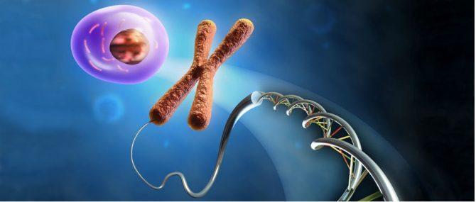 Malattie genetiche e DGP: Situazione attuale in Italia