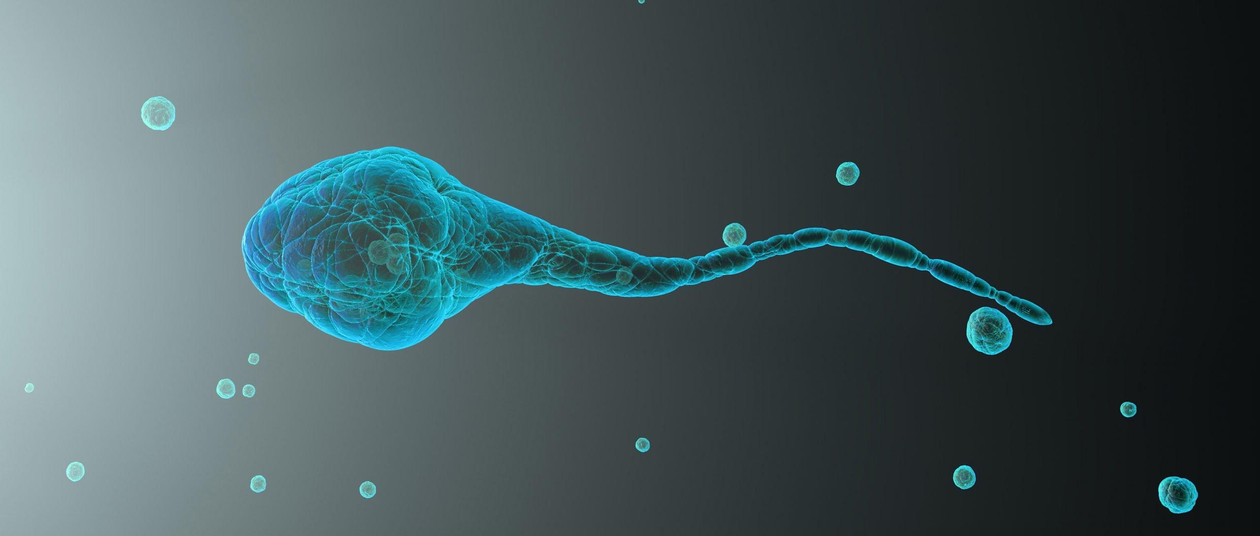 Agopuntura e fertilità maschile