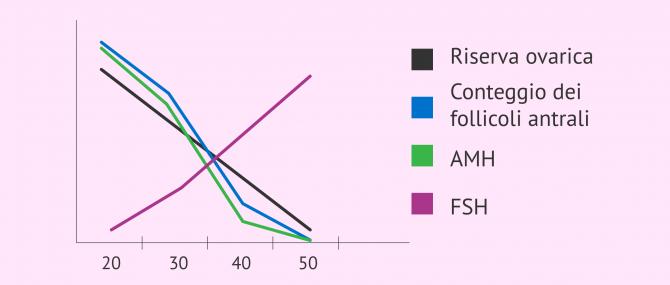 Imagen: Rapporto tra AMH, FSH, conteggio dei follicoli e riserva ovarica