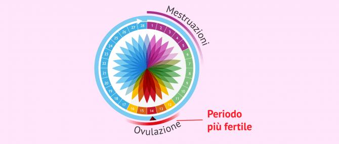 Imagen: Calendario dell'ovulazione