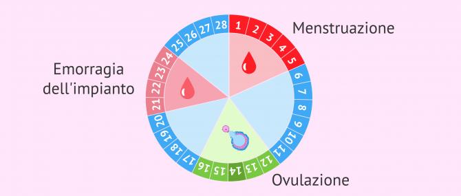 Imagen: Emorragia dell'impianto nel ciclo mestruale