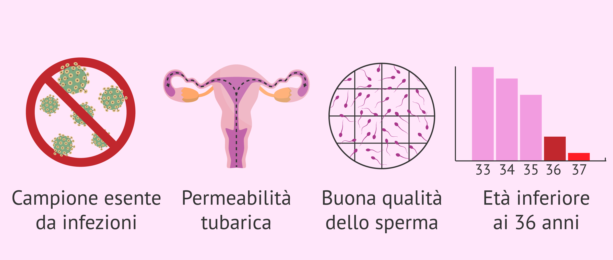 L'inseminazione artificiale