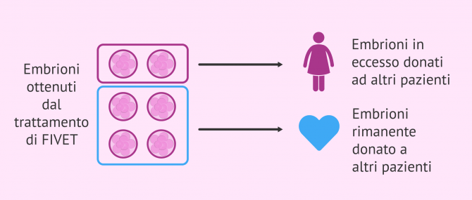 Imagen: I benefici dell'azione di embrioni