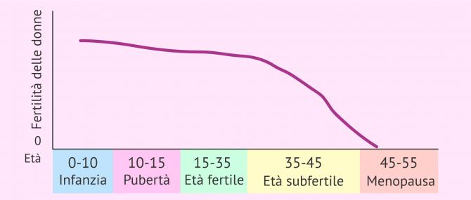 Imagen: Fertilità delle donne