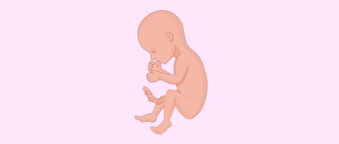 Imagen: 6 mese di gravidanza