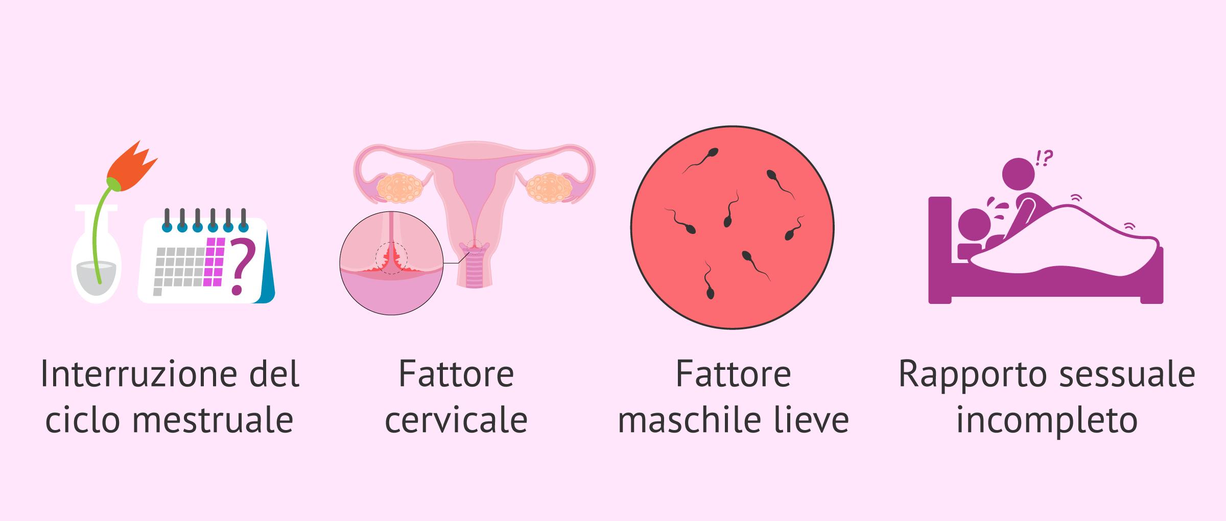 Imagen: Spermatozoi colorati
