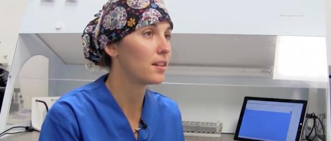 Imagen: Maria De Las Heras (embriologa)