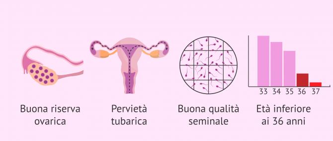 Imagen: Requisiti per l'inseminazione artificiale (AI)