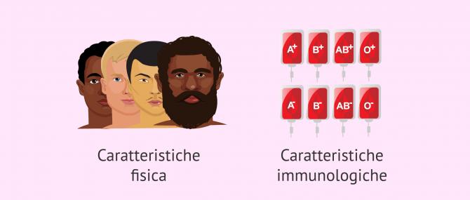 Imagen: Criteri di selezione del donatore