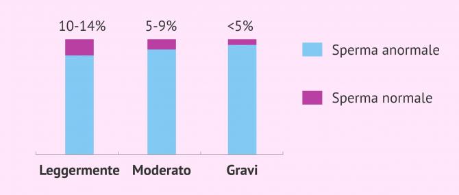 Imagen: Tipi di teratozoospermia